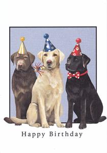 Birthday Dogs Happy Greeted Inside Were Ready To Celebrate With You