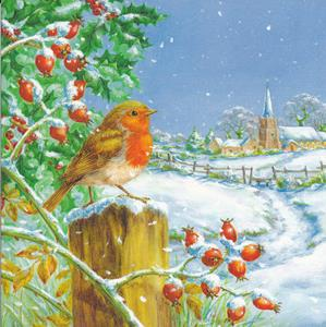 Robertson Collection Christmas Cards - Code D $2.75 p/c